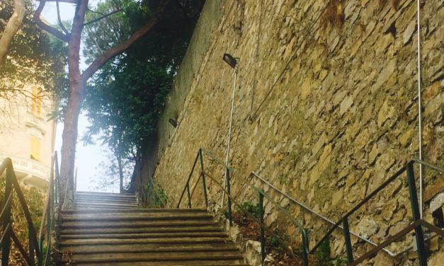 Aprono gli ingressi laterali e la scalinata storica