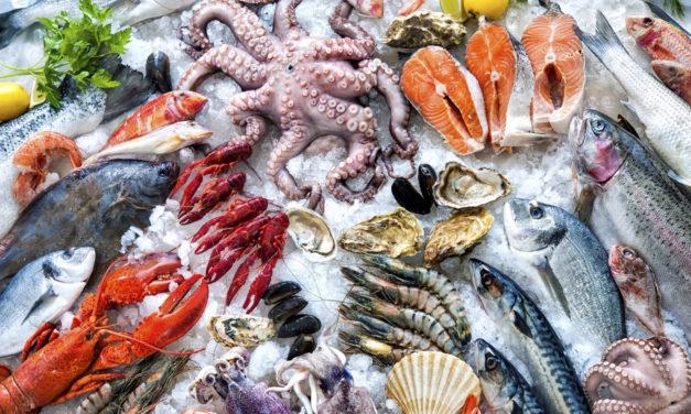 Scopri Sâ de Mâ, il regno del pesce in Arena Albaro Village
